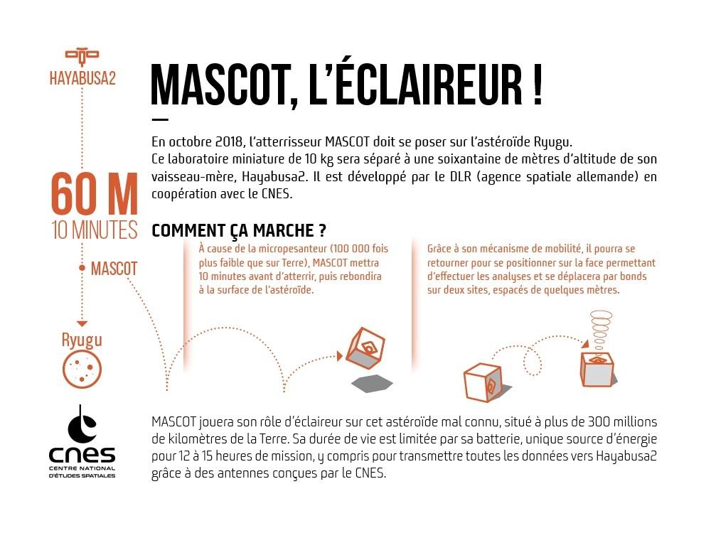 bpc_mascot-infographie-hd.jpg
